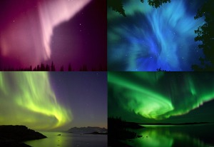 Auroras of differents colors