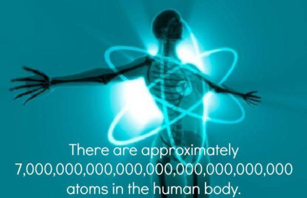 Human Body Atoms