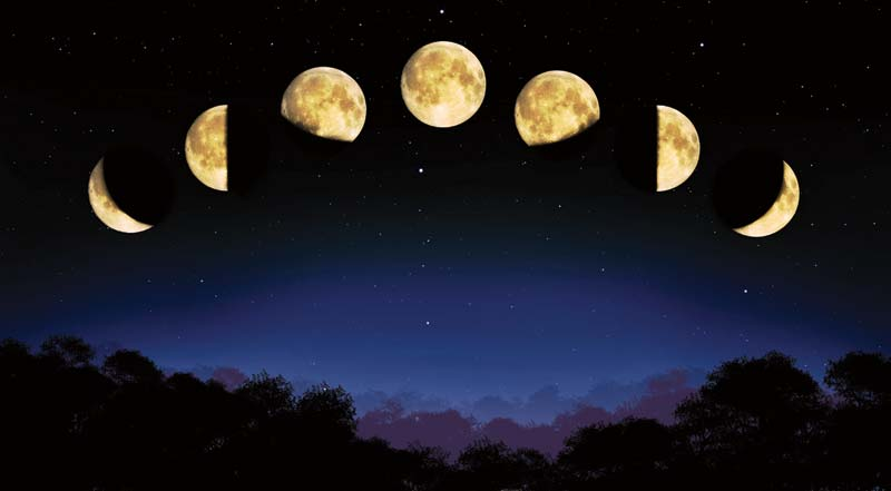 moon in order are new moon waxing crescent first quarter waxing ...