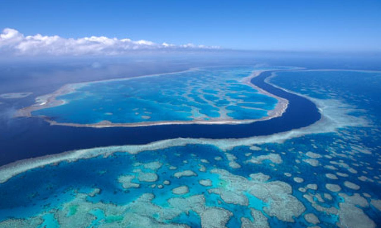 Blue Island Press Australia