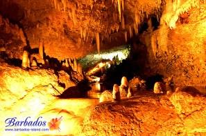 Harrisoon's Caves,
