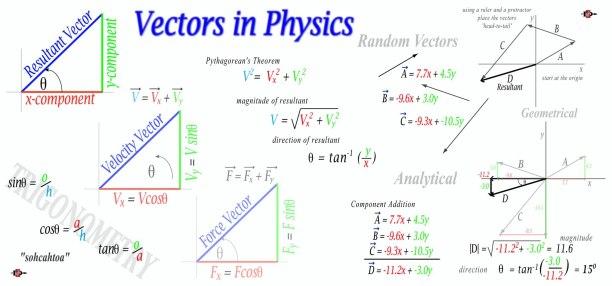 Vectors in Physics