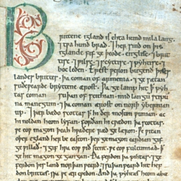 Anglo Saxon Chronicles Book