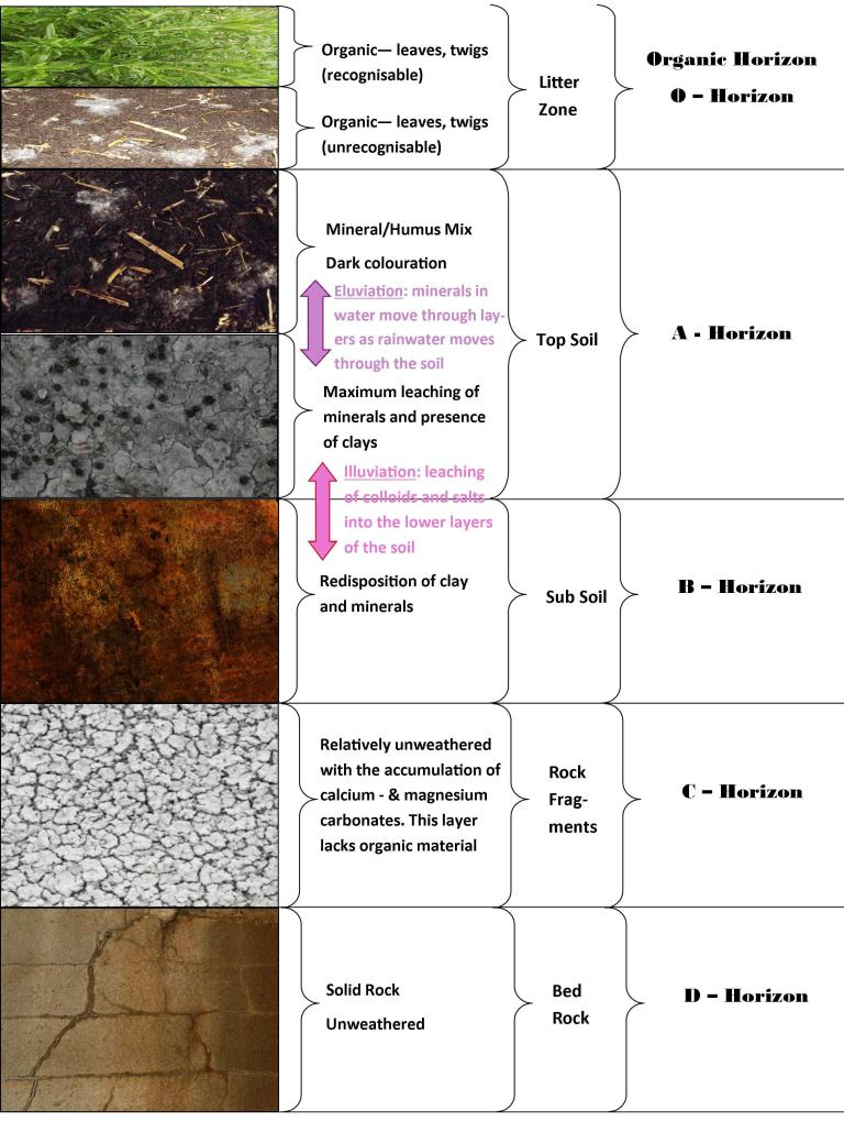 Geology know it all page 4 for Soil and its types