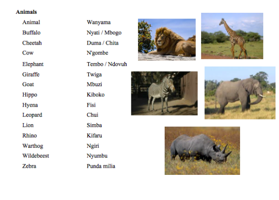 Swahili Animals