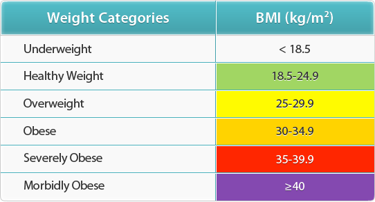 healthy body fat percentage bmi