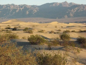 Great Bassin Desert, North America