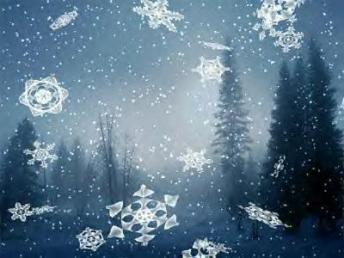 Snowflakes in forest