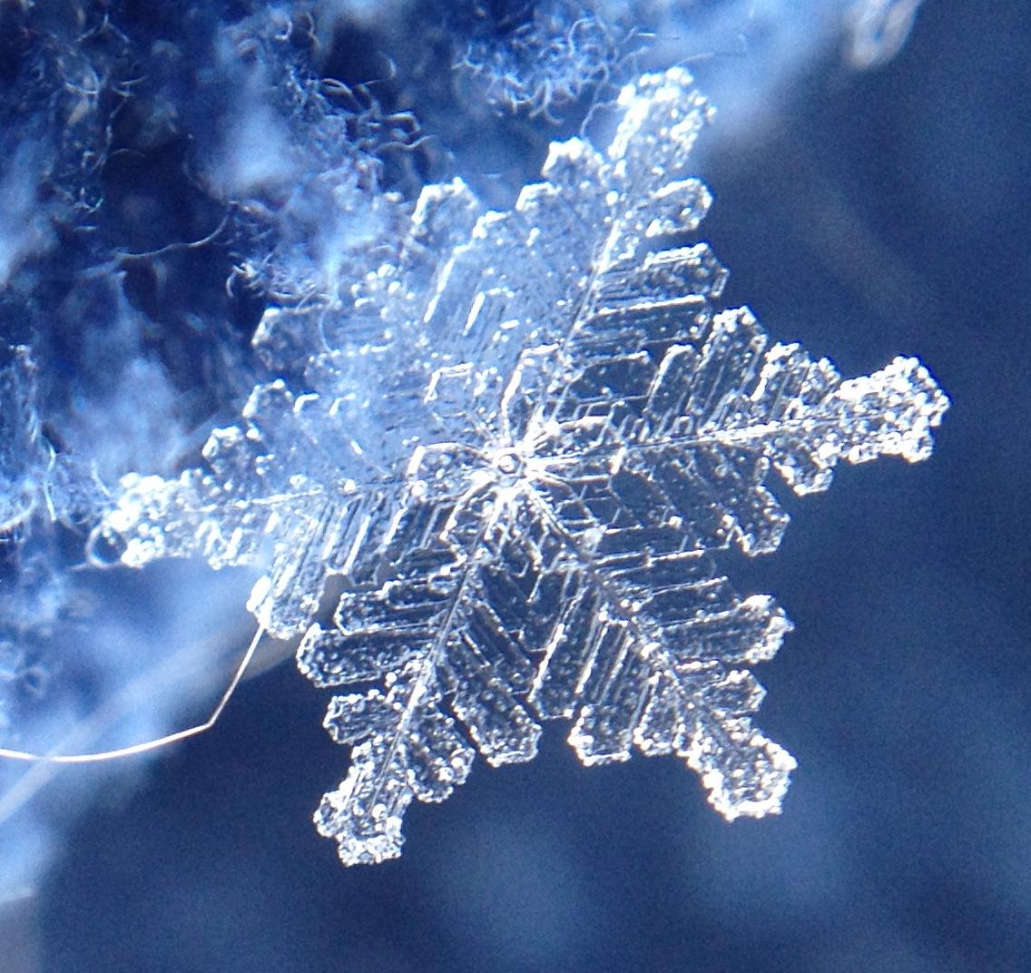Chiunque e nessuno Stunning-snowflake