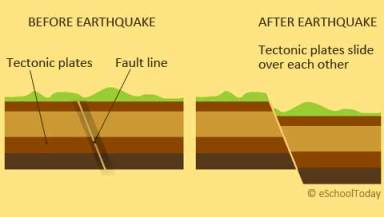 Tectonic Plates and Fault Line