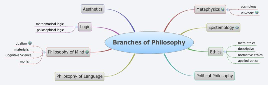 philosophy of mind essay questions