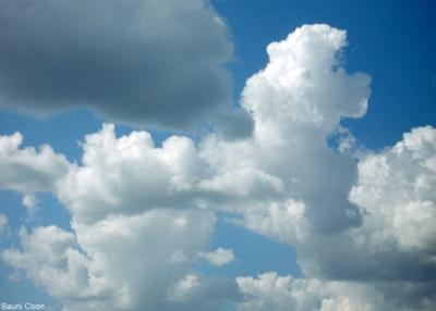 Cloud Shaped Like Dog