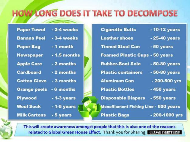 How Long does it take a Plastic Bottle to Decompose
