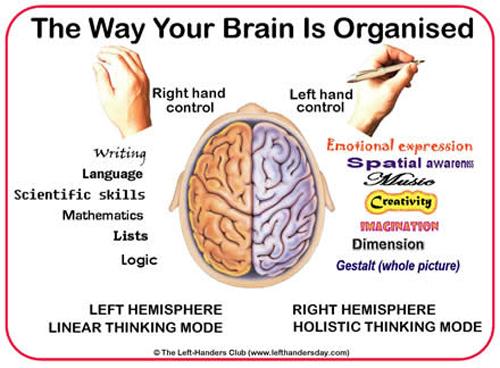 Left Handed Brain