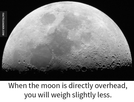 Moon Overhead, You Weigh Less