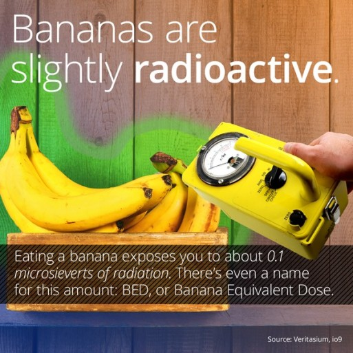 Bananas are slightly Radioative