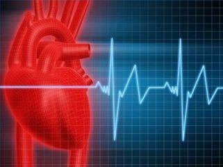 Heart Beat Pulse Rate