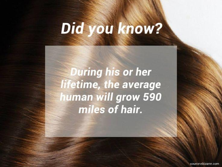 How long does the human hair grow in a lifetime know it all how long does the human hair grow in a lifetime urmus Choice Image