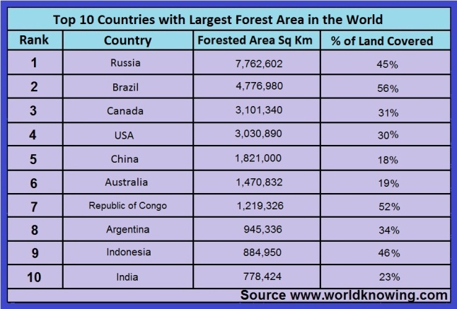 Top 10 Countries with Largest Forest in the World