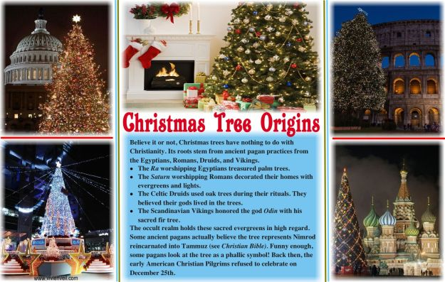 Christmas Tree Origins -