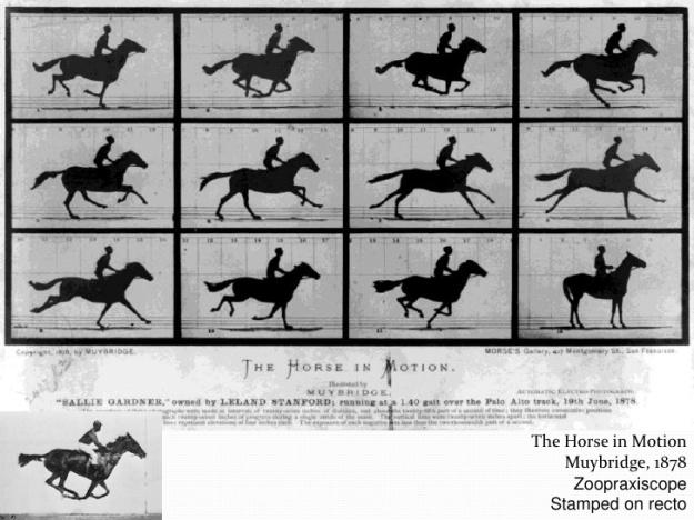 Eadward Muybridge - Movie on Horse