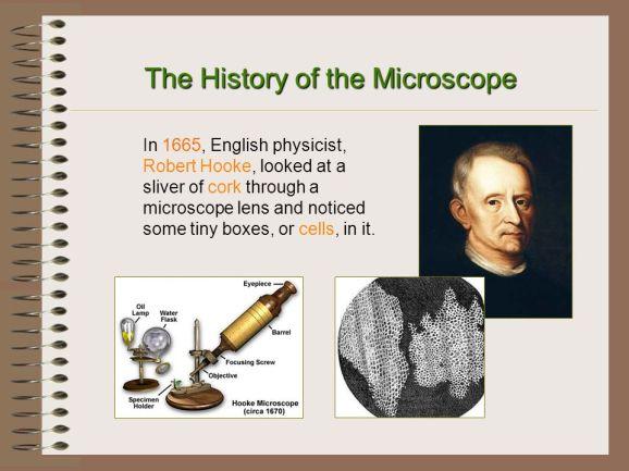 Microscope History - Robert Hooke