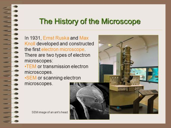 Microscope History - Ruska and Knoll