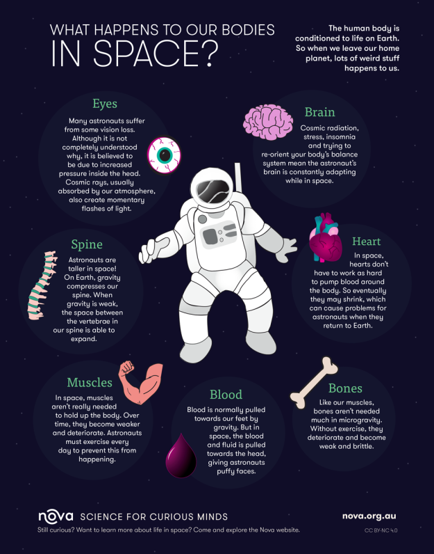 What Happens to our Bodies in Space