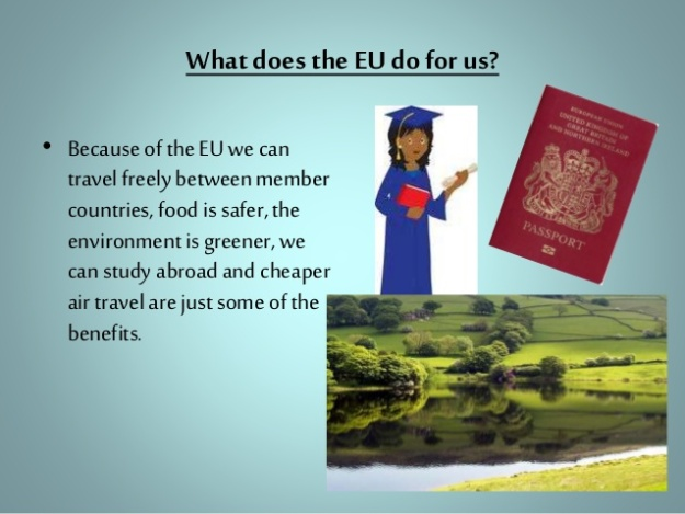 What does the EU do for us