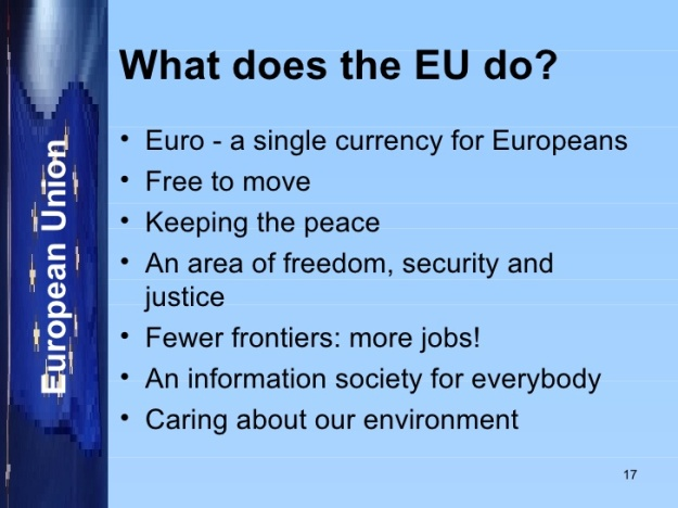 What does the European Union do
