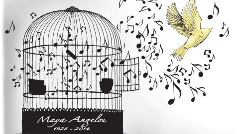 I know Why the Caged Bird Sings - Bird fly