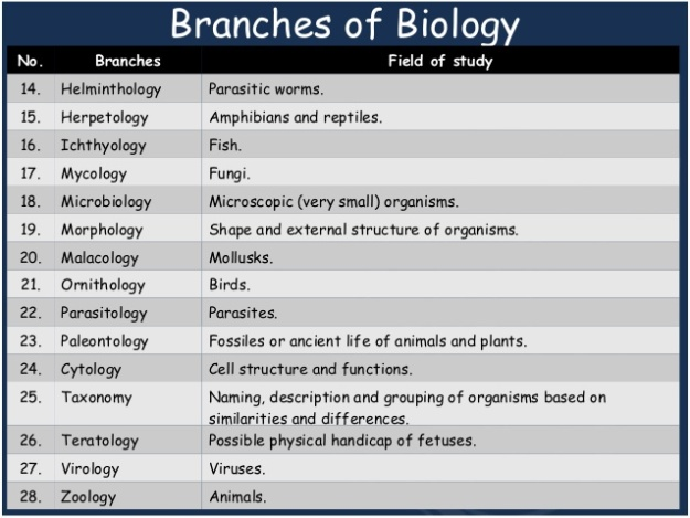 2 - Branches of Biology