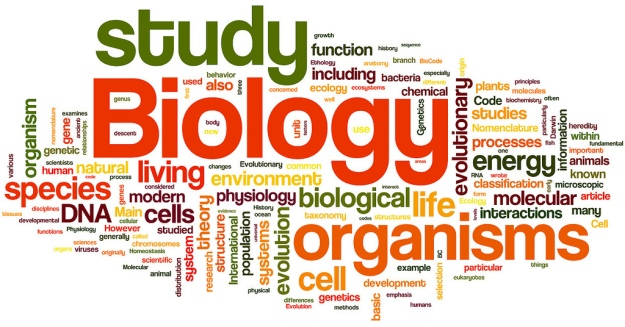 branches of biology Articles on the origin of biology and its relation to other branches of natural science br med j 1893 2 doi: (published 16 september 1893) cite this as: br med j 18932:613 article related content metrics responses peer review loading this article has a correction please see.