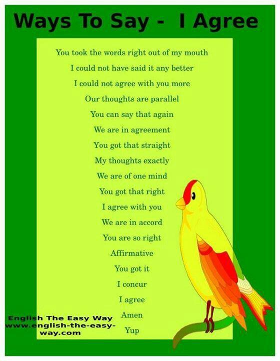 20-ways-to-say-i-agree