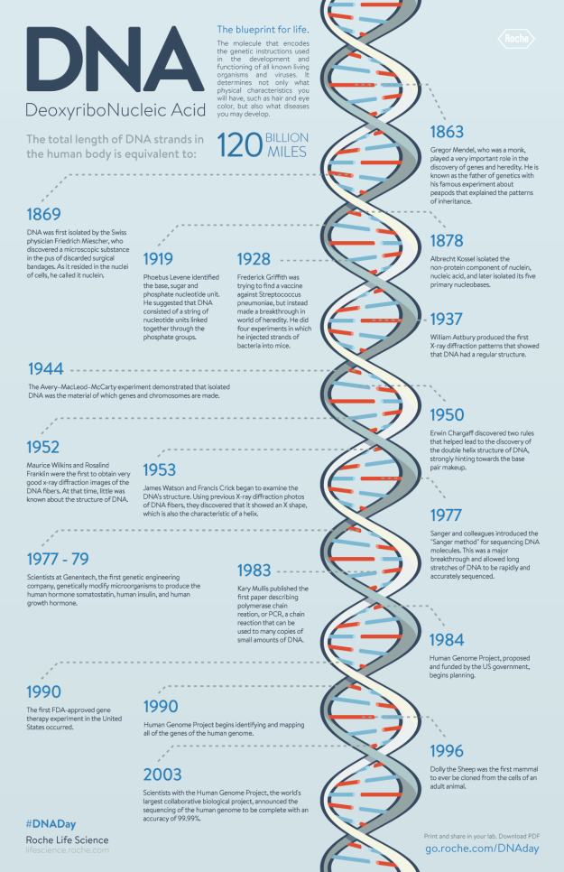DNA - History & Timeline