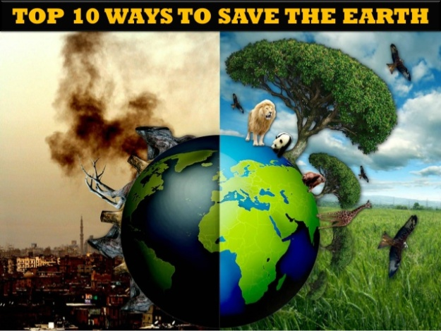 Top 10 Ways to Save the Earth
