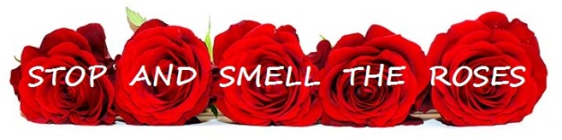 Danish Proverb - Stop and Smell the Roses