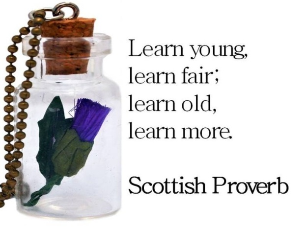 Scottish Proverb - Learn Young, Learn Fair; Learn Old, Learn More
