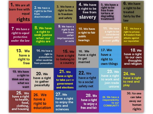30 Articles of the International Declaration of Human Rights