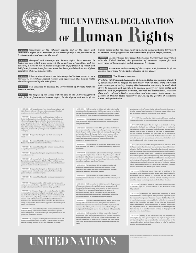 Document of the 30 Articles of the International Declaration of the Human Rights