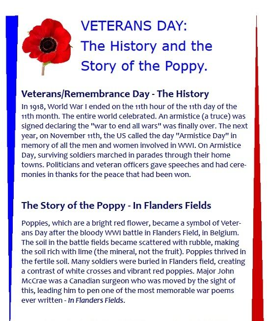 Veterans Day - The History and the Story of the Poppy