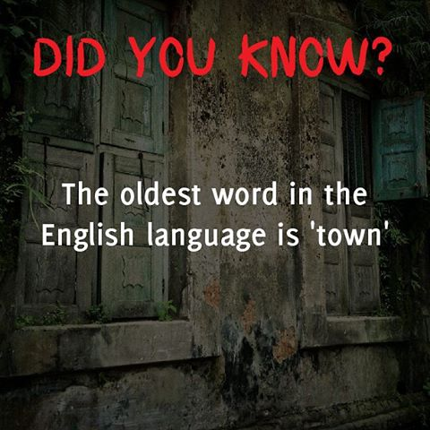 What is the Oldest Word in the English Language