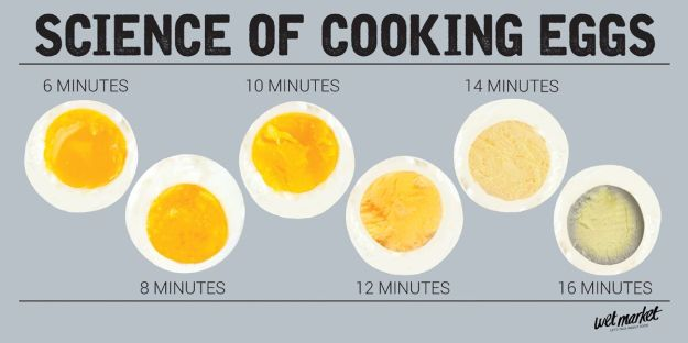 Science of Cooking Hard Boiled Eggs