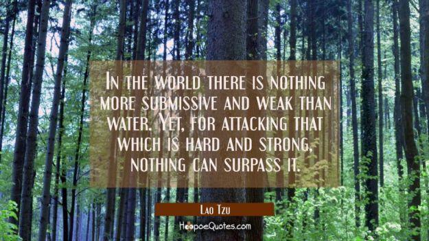 Lao Tzu Quotes 5