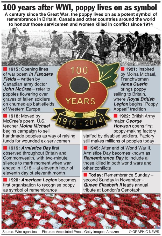 100 Years Poppy