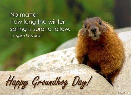 What Countries Celebrate Groundhog Day