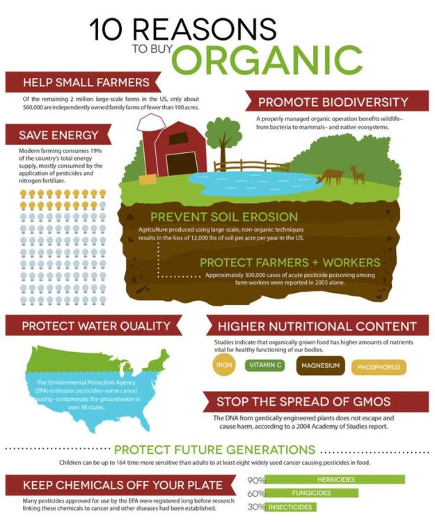 10 Reasons to Buy Organic