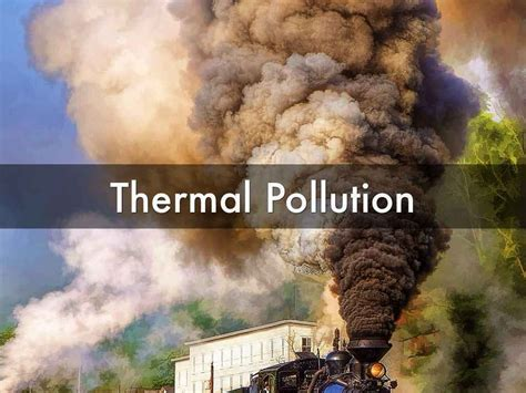 Thermal Pollution Train