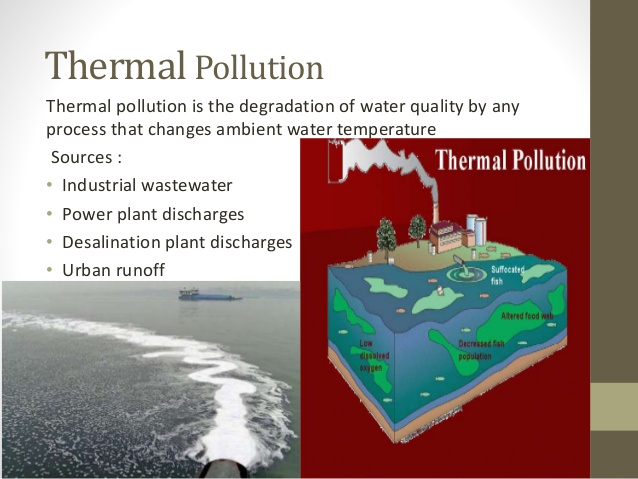 What are the Sources of Thermal Pollution
