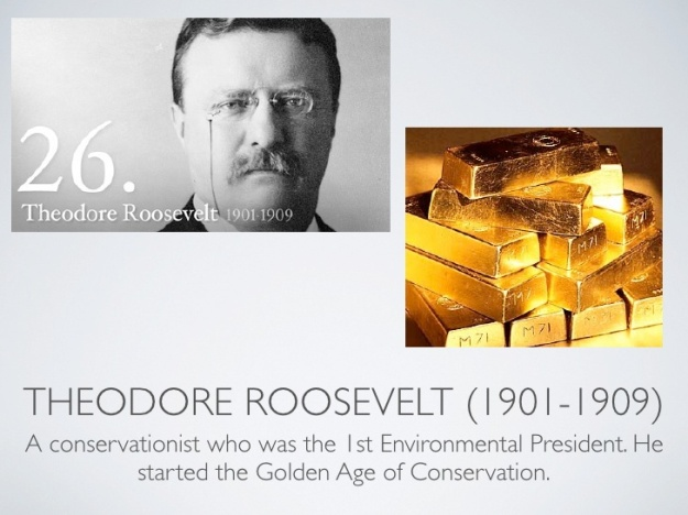 Theodore Roosevelt Biography